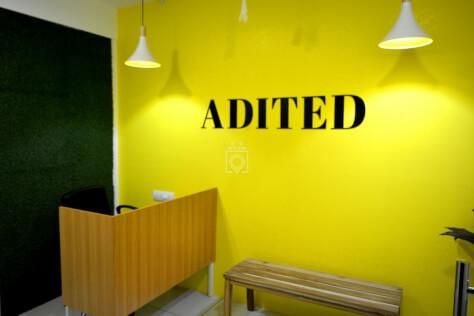Adited Coworking Elite House
